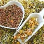 Cómo y por qué incorporar soja a nuestra dieta