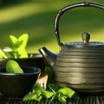Los beneficios milenarios del té verde